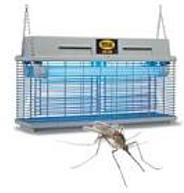 insektenschutz_2.jpg